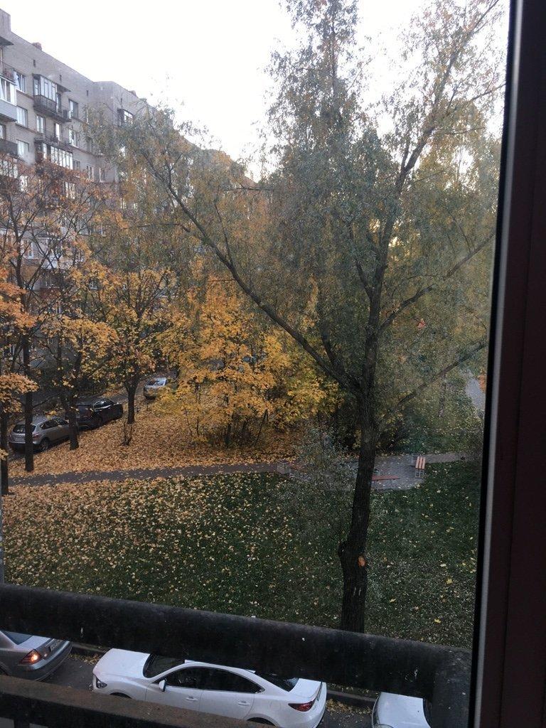 Пулковская ул., д 9, корпус 1