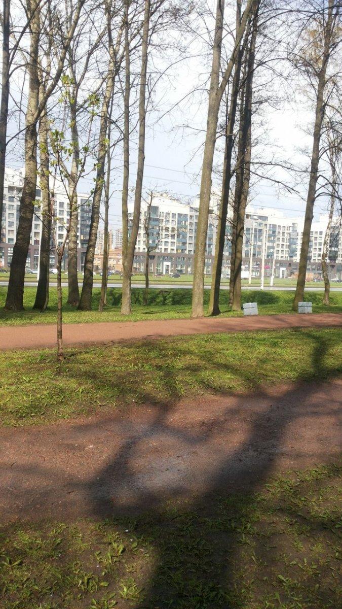 Петергофское шос., д 53, корпус 10