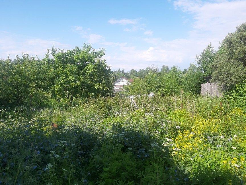 Продажа участка, Флора, Березовая ул.,  д 398