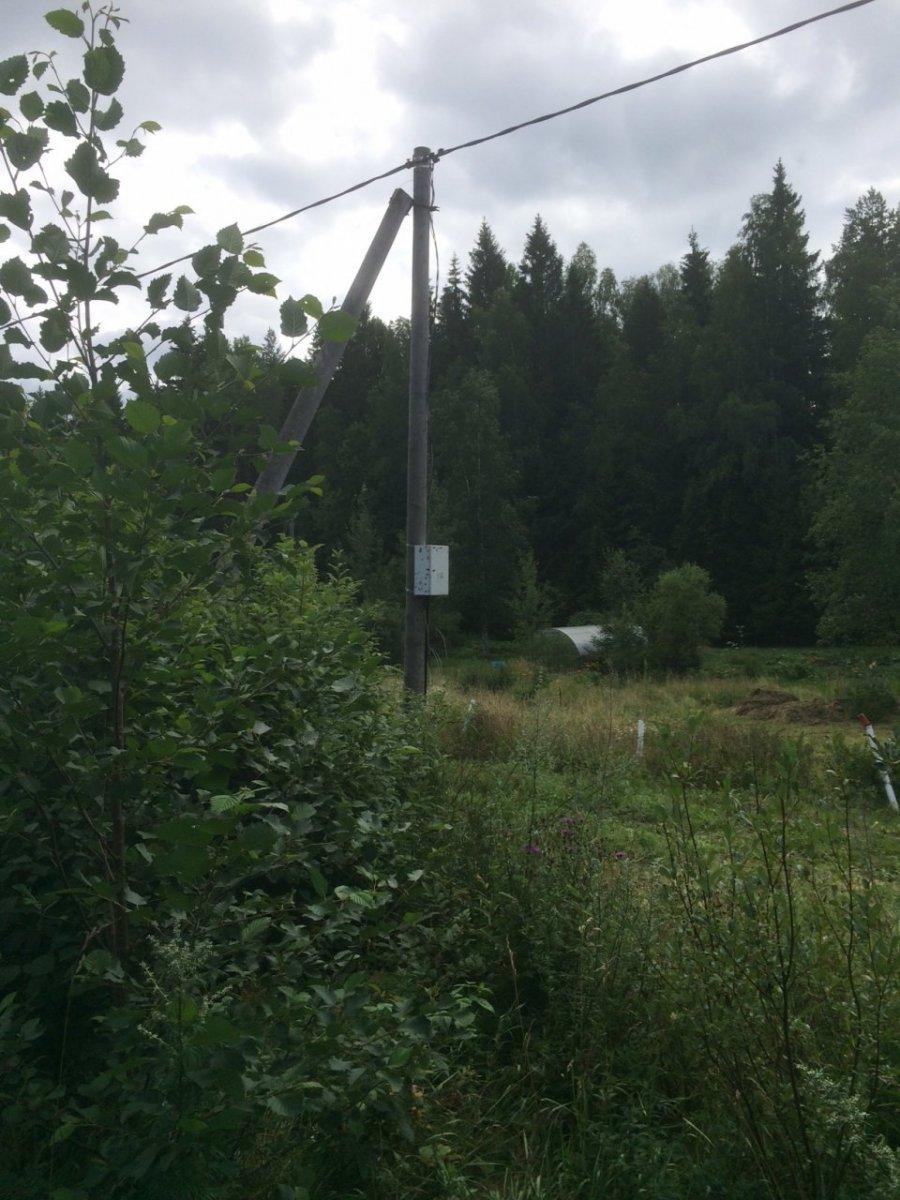 Продажа участка, Лесной Кордон, Лесной Кордон пос.