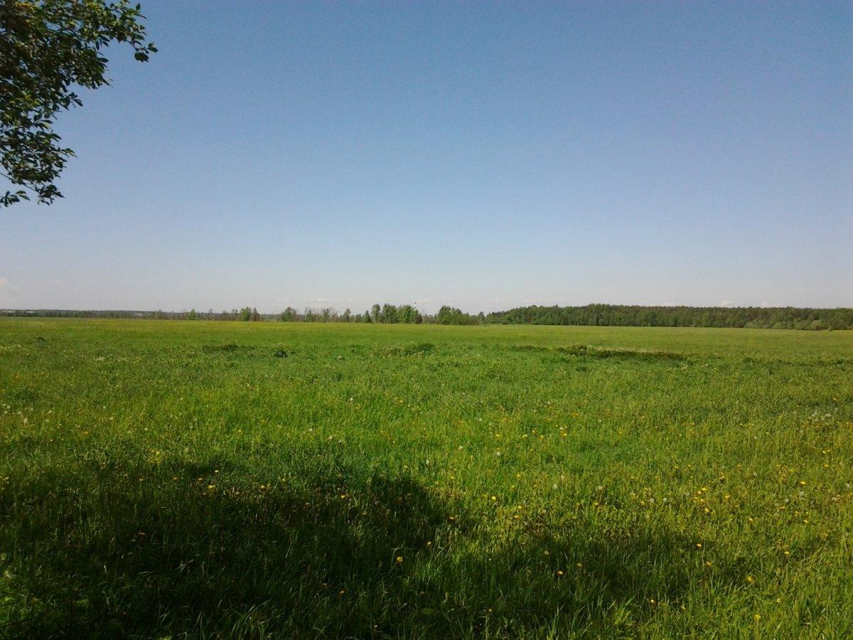 Продажа участка, Старая, Колтушское шос.