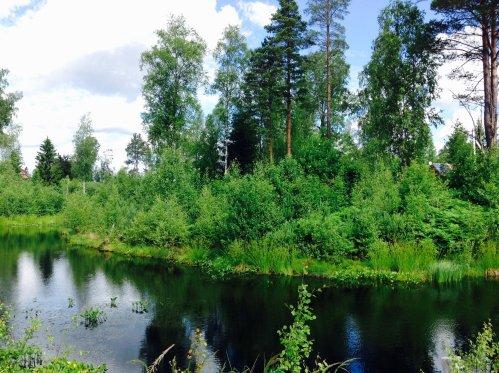 Земельный участок в Грузино, на этом фото